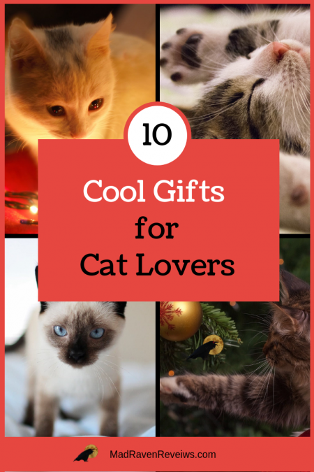 10 Cool Gifts For Cat That Your Will Actually Reciate